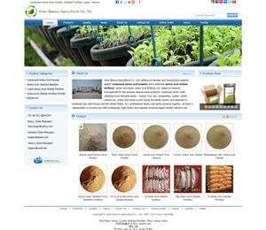 外贸SOHO网站建设成功案例