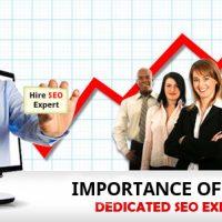 专业Google SEO代理机构 - 杰欣网络营销机构